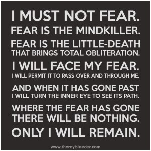 FEAR-IS-THE-MINDKILLER